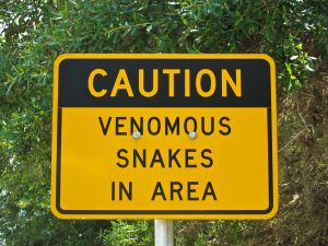 caution-snakes-sign-300x225