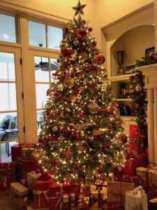 christmas-tree-photo-225x300